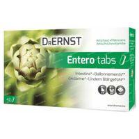 Dr Ernst Entero Tabs 42  tabletten