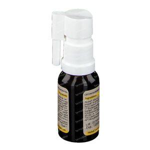 Herbalgem Propolis Large Spectrum Bio 15 ml spray