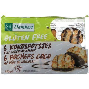 Damhert Rochers Coco au Chocolat Sans Gluten 250 g