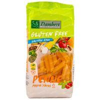 Damhert Pâtes Penne Sans Gluten 250 g