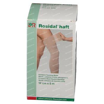 Lohmann & Rauscher Rosidal Haft 12cm x 5m 31976 1 stuk