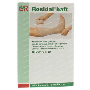 Lohmann & Rauscher Rosidal Haft 10cm x 5m 31975 1 st