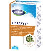 Bional Hepafyt 40  capsules