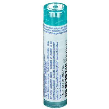 Boiron Granulen Acidum Phosphoricum 15CH 4 g