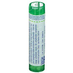 Boiron Gran Allium Cepa 5Ch 4 g