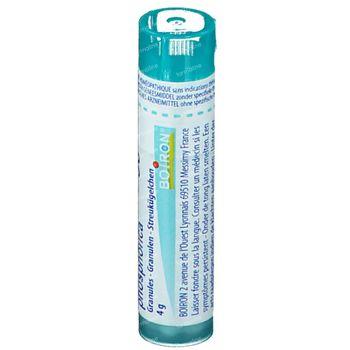 Boiron Gran Calcium Phosphoricum 30K 4 g