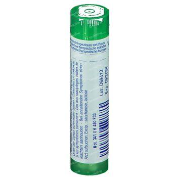 Boiron Gran Ferrum Phosphoricum 5Ch 4 g