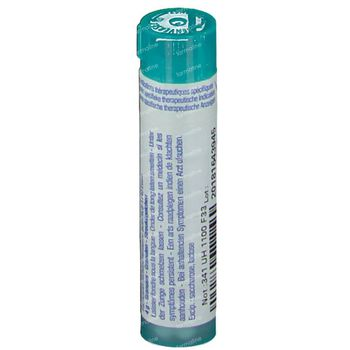 Boiron Gran Vaccinotoxinum 200K 4 g