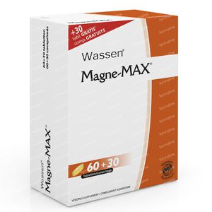 Magne-Max 60+30 Free 90 tablets