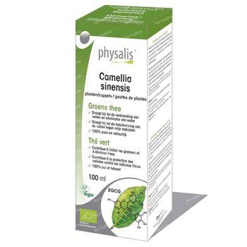 Physalis Camellia Sinensis Gouttes de Plantes Bio 100 ml