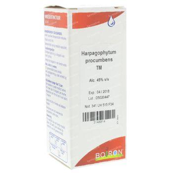 Boiron Harpagophytum Proc MT 60 ml