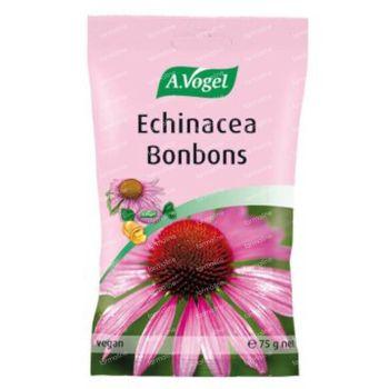 A.Vogel Echina C Bonbons 75 g