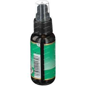 Primavera Bio Air Spray Energy 30 ml