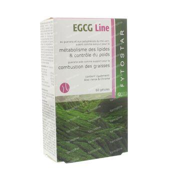Fytostar Expertise EGCG Line Prix Réduit 60 capsules
