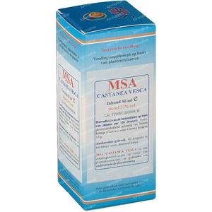 Castanea Vesca MSA Maceraat 50 ml druppels