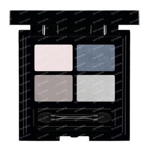 Les Couleurs De Noir Soft Touch Oogschaduw Quattro 01 Koud 4 g