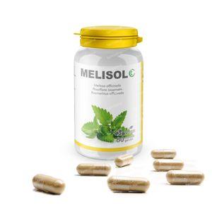 Melisol 60 tabletten