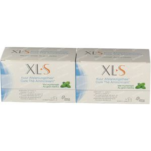 XLS Slimming Tea Mint 2nd At -50% 2x20 bustine