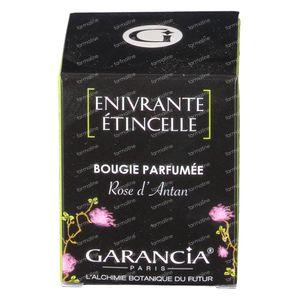 Garancia Kaars Rozengeur 70 g