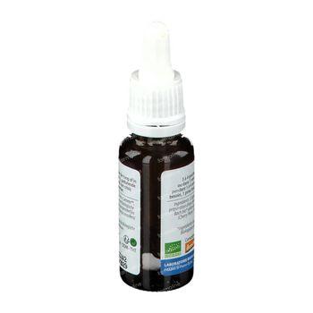 Biofloral Bachbloesems 06 Kerspruim Bio 20 ml