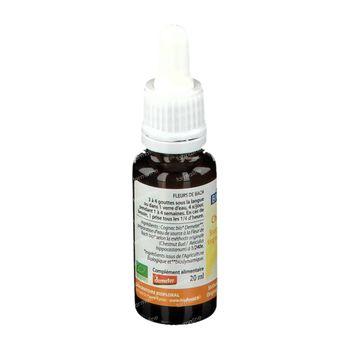 Biofloral Bachbloesems 07 Knop van de Paardenkastanje Bio 20 ml