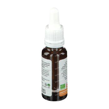 Biofloral Bachbloesems 09 Bosrank Bio 20 ml