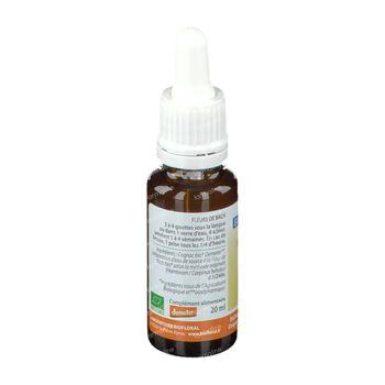 Biofloral Bachbloesems 17 Haagbeuk Bio 20 ml