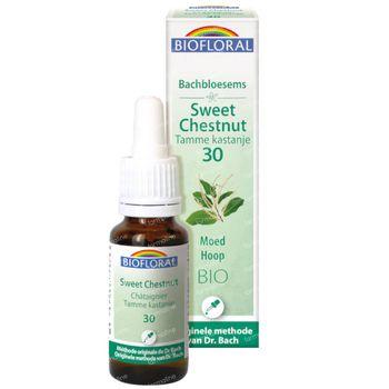 Biofloral Bachbloesems 30 Tamme Kastanje Bio 20 ml