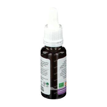 Biofloral Bachbloesems 31 IJzerhard Bio 20 ml