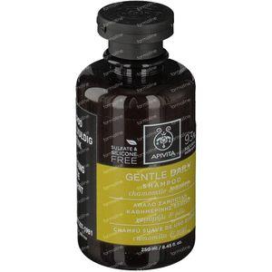 Apivita Shampoo Voor Veelvuldig Gebruik 250 ml fles