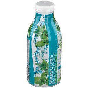 Bio Seasons Shampoo Refreshing & Purifying Peppermint - Mint Arvensis 300 ml