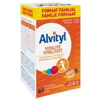 Alvityl Vitaliteit Multivitamine 90 stuks