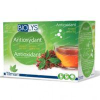 Biolys Thee Antioxidant Rooibos - Groene Thee 24  zakjes