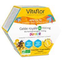 Vitaflor Koninginnengelei Bescherming + Junior 14  unidosis
