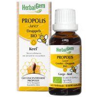 HerbalGem Propolis Junior Bio Siroop 150 ml
