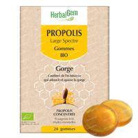 HerbalGem Propolis Large Spectre Bio 24  gommes à croquer