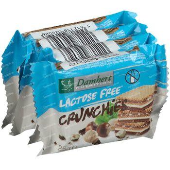 Damhert Lactose Free Crunchies 100 g