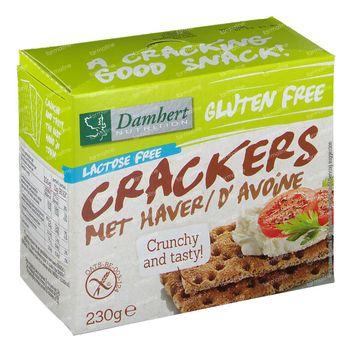 Damhert Sans Gluten Crackers Avoine Sans Lactose 230 g