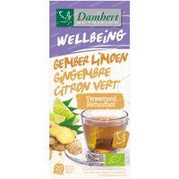 Damhert Wellbeing Tea Ginger - Lime Bio 35 g
