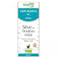 Herbalgem Berkensap Detox Bio 250 ml
