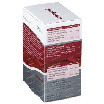Masquelier's Anthogenol 120 capsules