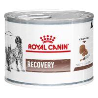 Royal Canin Canine/Feline Recovery 12x195 g