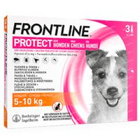 FRONTLINE Protect Spot On Vlooien en Teken Hond S 3  pipet(ten)