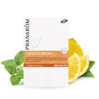 Pranarôm Pranacaps Orégano Plus Bio 75  capsules