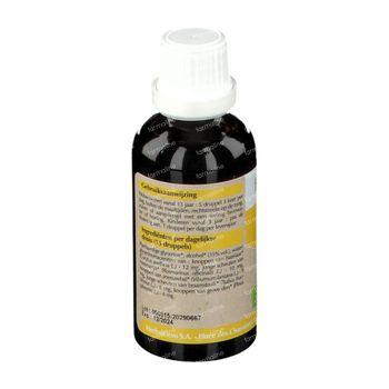 HerbalGem Respigem GC30 Bio 50 ml
