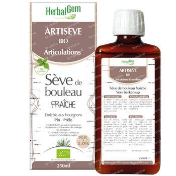 HerbalGem Artiseve Bio 250 ml