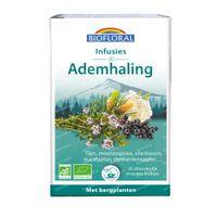 Biofloral Kruidenthee Ademhaling Bio 20x24 g