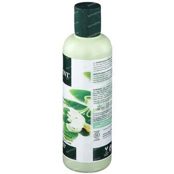 Herbatint Moringa Herstellende Shampoo 260 ml