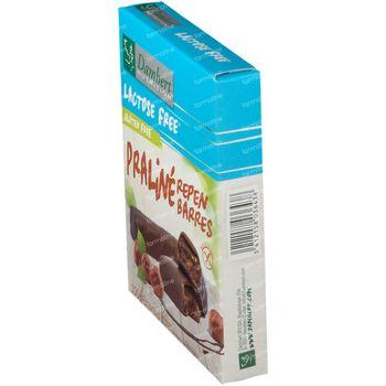 Damhert Lactose Free Praliné Repen Gluten Free 100 g