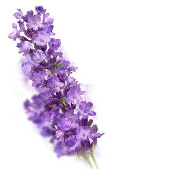 Kneipp Badkristallen Relaxing Lavendel 600 g